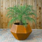 Why Corten Steel Planters Are The Perfect Gardening Match