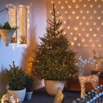 Festive Ready Homes