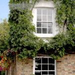 Why Choose Timber Windows Over UPVC?