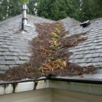 How To Keep Your Roof Clear From Debris?
