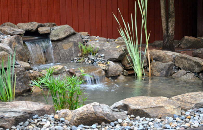 Why You Should Think About Installing A Garden Pond