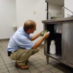 What Is A Pest Exterminator?