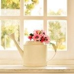 Why Sash Windows Are Becoming More Popular