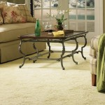 Important Considerations For Selecting The Best Carpet Cleaning Company