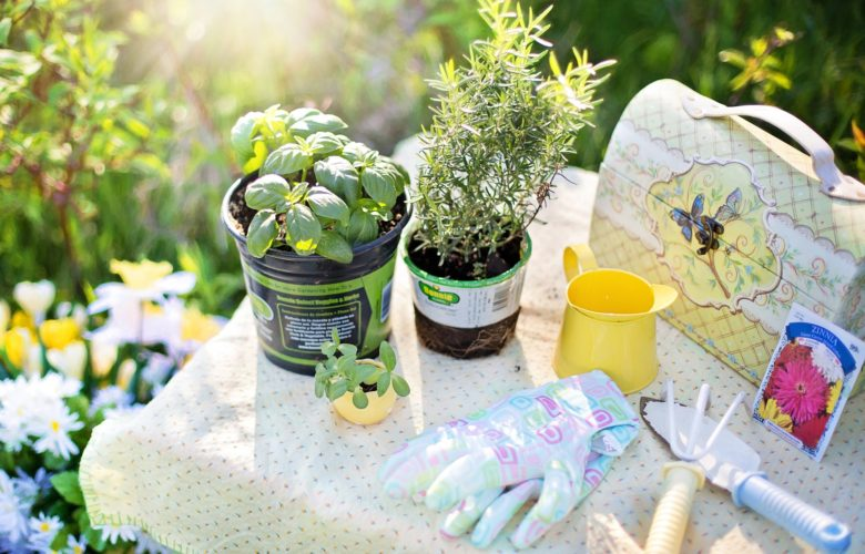 7 Must-Have Gardening Tools