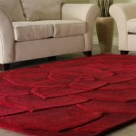 Standard Or Modern Rugs: Which Are Better To Make Use of In your home?