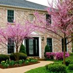 How To Spruce Up The Home For Spring